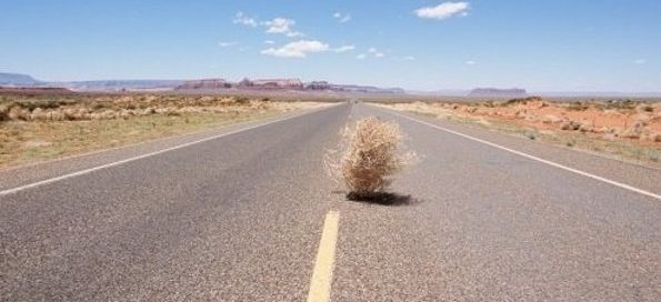 Don't let your WordPress post disappear like tumbleweed